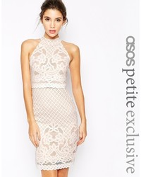 Petite body conscious dress in lace with high neck medium 367950