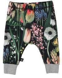 Molo Simone Graphic Jogger Pants