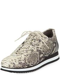 Relay python print sneaker metal medium 184527