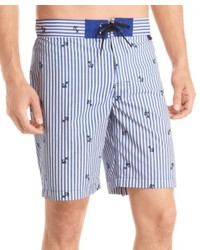 Light Blue Vertical Striped Shorts