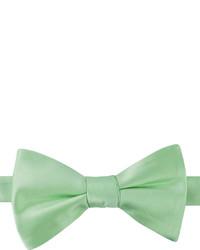 Mint Bow-tie