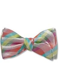 Multi colored Bow-tie