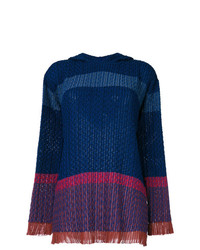 Stella McCartney Hooded Sweater