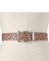 Tan Leopard Belt